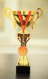 Zwycięzca filiżanka Fotografia Stock