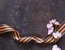Zwycięstwo dnia wiosny i faborku kwiaty wakacyjni Obrazy Royalty Free