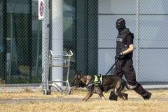 Zwyczaje, rabatowy ochrona oficer i pies i obrazy stock