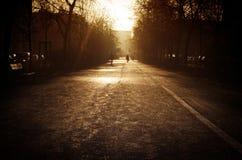 Zwyczajna ulica Osamotniony przechodnia spacer wzdłuż alei Fotografia Royalty Free