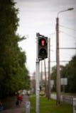 Zwyczajni światła ruchu z czerwonym przerwa sygnałem Zdjęcie Royalty Free