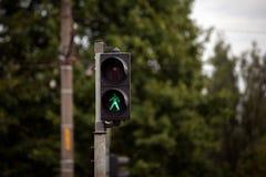 Zwyczajni światła ruchu z czerwonym przerwa sygnałem Fotografia Royalty Free