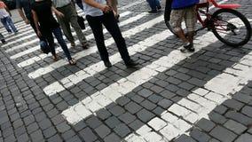 Zwyczajny crosswalk Fotografia Royalty Free