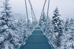 Zwyczajny zawieszenie most w Sattel lucerny regionie Szwajcaria obraz royalty free