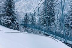 Zwyczajny zawieszenie most w Szwajcaria zdjęcia royalty free