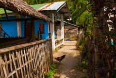 Zwykły lokalny wiejski dom w Apo wyspie, Filipiny Obraz Stock