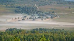Zygzakowaty ślad w mgłowym ranku, upływ zdjęcie wideo