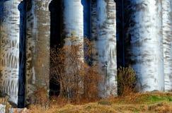 Zylinder-geformte Silos mit getrübtem Metall lizenzfreies stockfoto