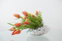 Zylinder-Glasvase mit orange Tulpen stockbild