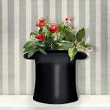 Zylinder mit roten Rosen lizenzfreie stockbilder