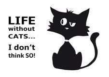 Zynische Katze mit Zitat Leben ohne Katzen, die ich nicht so denke, lustiges Tier, lokalisiert auf weißem Hintergrund lizenzfreie stockfotos