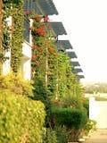 Zypern-Hotel Stockfoto