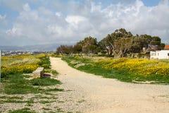 Zypern-Straße Felder von Frühlingsblumen, Zypern Rote und gelbe Blumen, blauer Himmel und Wolken Lizenzfreie Stockbilder