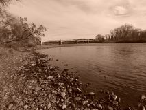 Zypresse-Alleen-Brücke im Sepia Lizenzfreie Stockfotos