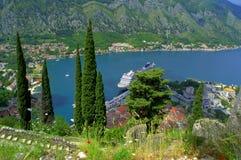 Zypresse-Bäume über Kotor-Bucht Lizenzfreies Stockfoto