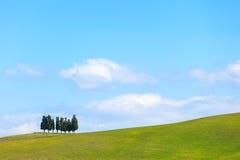 Zypresse-Bäume und ländliche Landschaft des Feldes in Kreta Senesi, Toskana. Italien Stockbild
