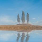 Zypresse-Baum-Reflexion im Wasser Lizenzfreies Stockfoto