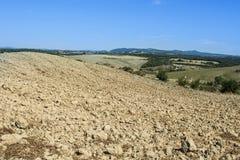 Zypresse-Gassen zwischen gepflogenen Feldern Lizenzfreies Stockbild