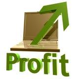 Zyskowna online biznesowa ikona Fotografia Royalty Free