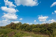 Zyuzelga河在蓝色夏天天空下 免版税图库摄影