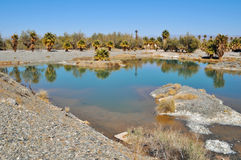 Zzyzx, balneario abandonado, desierto de Mojave fotografía de archivo