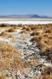 Zzyzx, lago soda, desierto de Mojave fotos de archivo libres de regalías