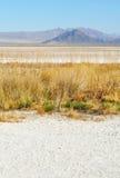 Zzyzx, Sodameer, Mojave-Woestijn royalty-vrije stock afbeeldingen