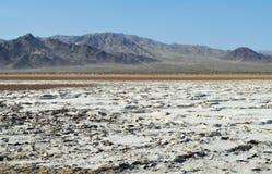 Zzyzx, Sodowany jezioro, Mojave pustynia Obrazy Royalty Free