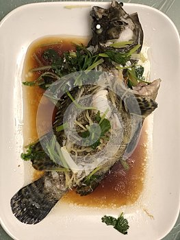Traditional Chinese Dish of Steam Fish