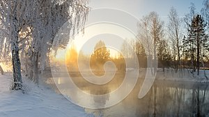 Snowy winter forest with shrubs and birch trees on the banks of the river with fog, Russia, the Urals, January