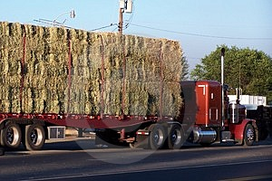 Side view of a hay hauling truck on scales