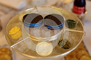 Premium french black beluga caviar in can VIP luxury food, appetizer ready to eat in Europe