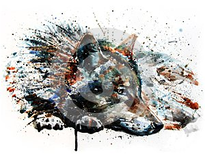 Wolf predator watercolor painting drawing