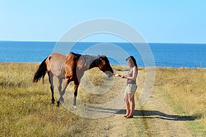 Woman Stroking a Beautiful Red Wild Horse