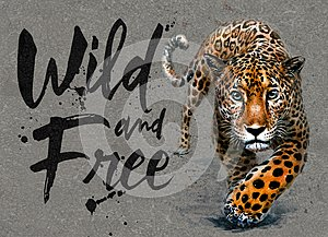 Jaguar watercolor painting with background, predator animals wildlife, wild and free wildlife print for t-shirt