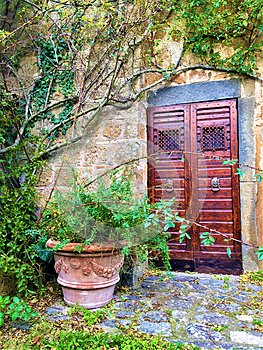 Vintage door and corner, plants, branches and fairytale in Civita di Bagnoregio, town in the province of Viterbo, Italy