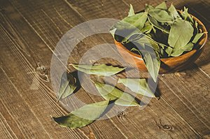 Spices of bay leaf in rural style/bay leaf in a wooden plate on a wooden background. Copy space