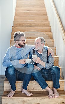 An adult hipster son and senior father sitting on stairs indoors at home, talking.