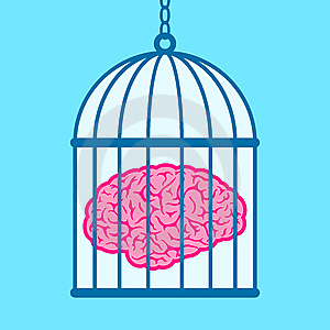 Brain captured in birdcage
