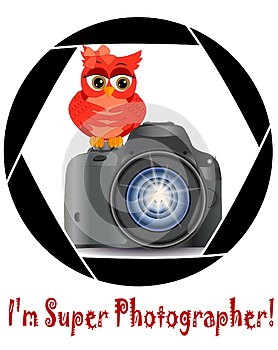 Beautiful cartoon red owl sits on the button Start the camera in the frame of the camera's aperture. Concept photography,