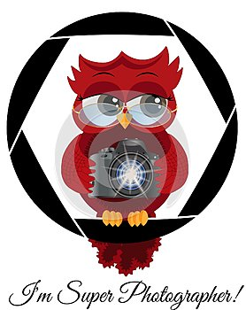 A beautiful cartoon red owl with a camera sits on the camera\'s diaphragm. Concept photography, vocations, photo business