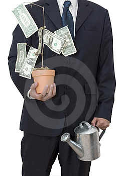 Businessman with money tree