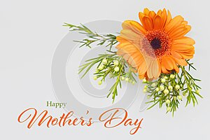Happy Mothers Day card. Gerbera daisy on grey background
