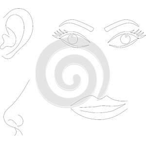 Senses, eyes ear nose lips illustration