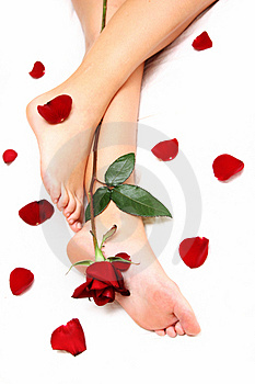 Legs and Rose
