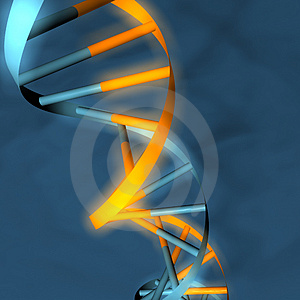 3D model DNA kmene (šroubovice).