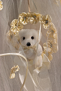 Teddy Bear Cover Photo 22186392 Timeline Images
