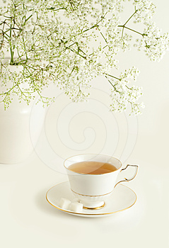 Cup of green tea on white background.