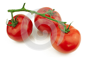 Tomatoes on stem