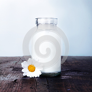 Carafe of milk and a daisy set for breakfast